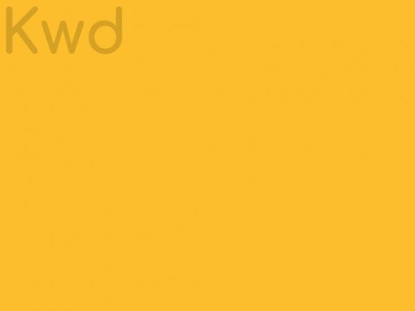 kiwiwebsitedesign.nz
